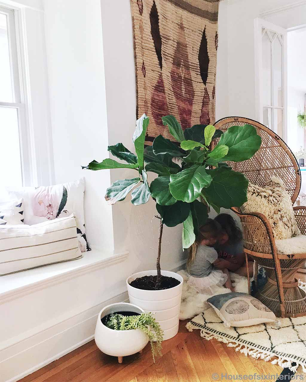 woolen green plant in white pot moroccan made oriental rugs