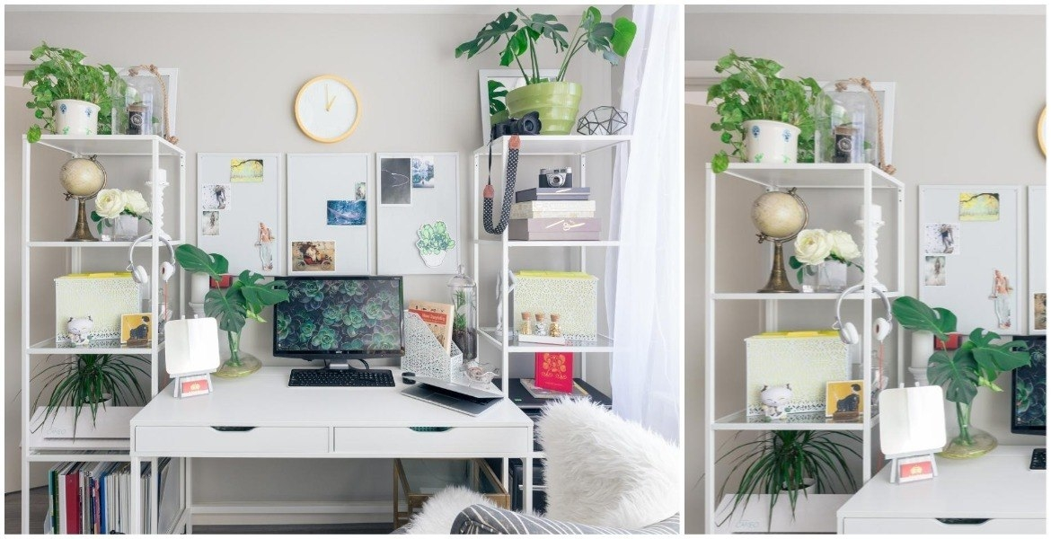 different-flowers-and-plants-in-home-office